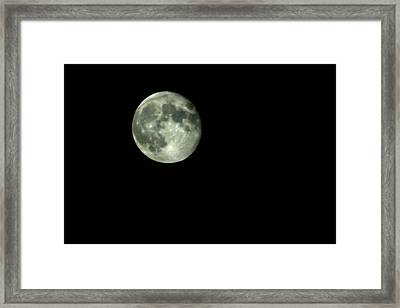 Infinity Framed Print by Courtney Webster