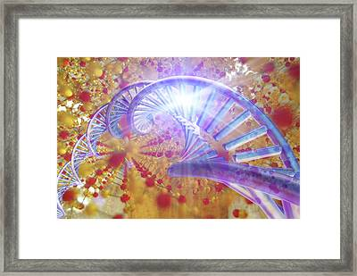 Information Storage In Dna And Silica Framed Print