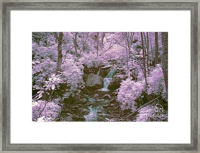 Infrared Mountain Stream Framed Print by Paul W Faust -  Impressions of Light