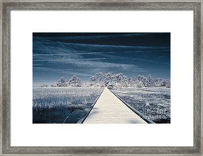 Infrared Shot Of Path Over Water Framed Print