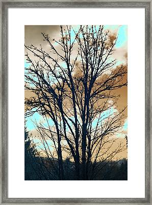 Framed Print featuring the photograph Infrared Split Second Sun Couds by Rebecca Parker