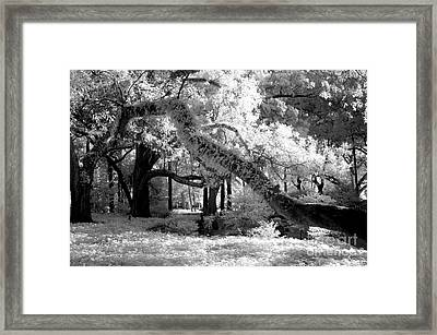 Infrared Surreal Gothic South Carolina Trees Landscape Framed Print by Kathy Fornal