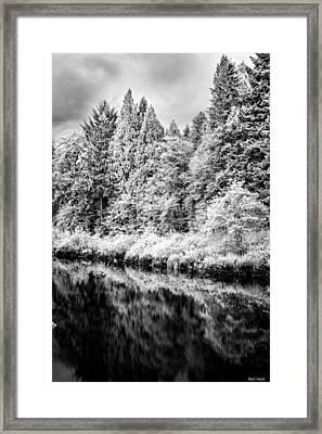 Infrared Trees Framed Print