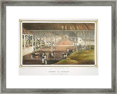 Ingenio El Progreso Framed Print by British Library