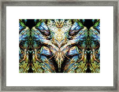 Ingrained Wings Framed Print