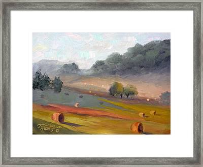 Ingram Haybales Framed Print by Tommy Thompson