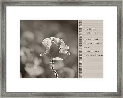 Ingredients For Life  Framed Print by Lisa Knechtel