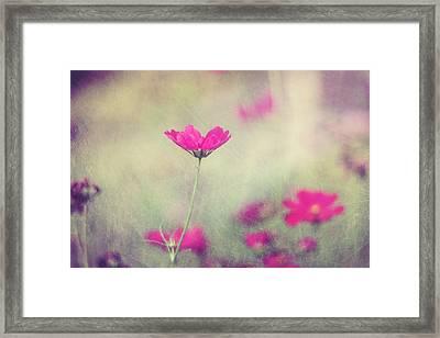Ingrid's Garden Framed Print
