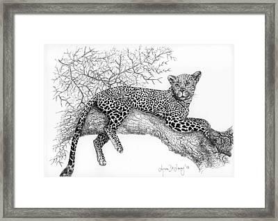 Ingwe Framed Print by Lynn  De Lacey