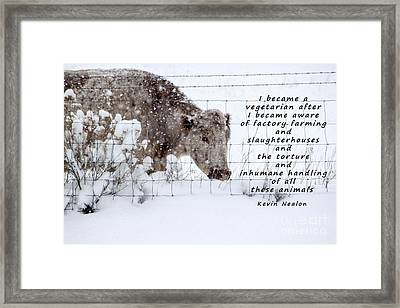 Inhumane Torture Of Animals Framed Print by Janice Rae Pariza