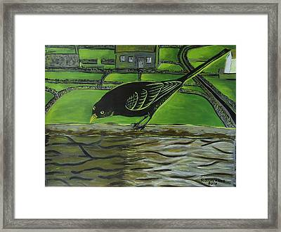 Inis Meain 24 Sunny Blackbird Framed Print by Roland LaVallee