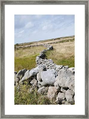 Inis Mor Fields Of Stone Framed Print by Danielle Summa