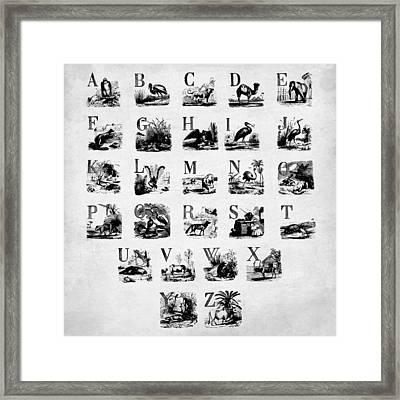 Ink Animal Alphabet  Framed Print