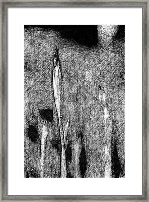 Ink Iris Framed Print by Yevgeni Kacnelson