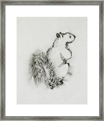 Ink Squirrel Framed Print