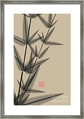Ink Style Bamboo Illustration In Black Framed Print