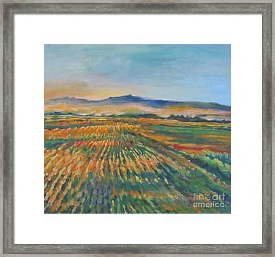 Inland Fields Framed Print