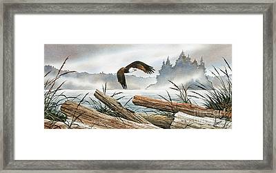 Inland Sea Eagle Framed Print by James Williamson