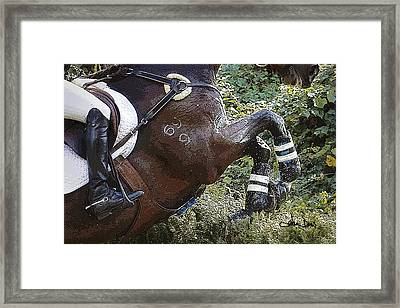 Inmidair Framed Print by Joan Davis
