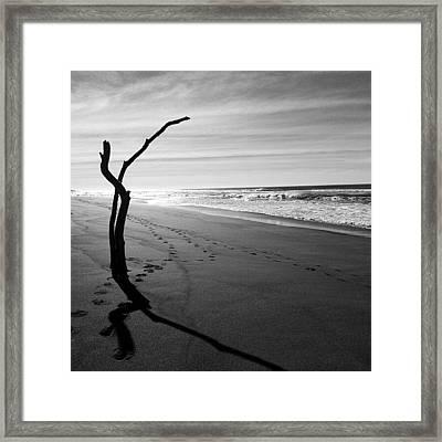 Innecto Framed Print