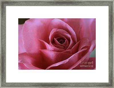 Inner Beauty All Profits Go To Hospice Of The Calumet Area Munster Indiana Framed Print