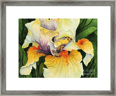 Inner Beauty Framed Print by Barbara Jewell