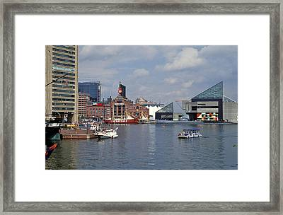 Inner Harbor Baltimore Md Framed Print by Gail Maloney