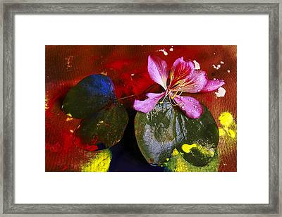 Inner Joy Framed Print