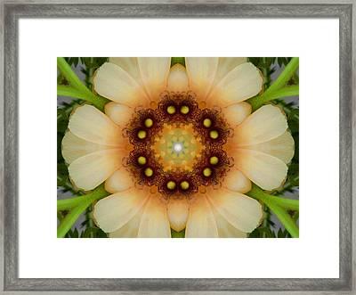 Inner Petal Flower Mandala Framed Print