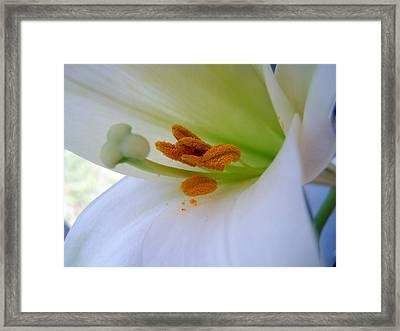 Inner Secrets Framed Print