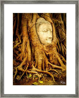 Inner Strength Framed Print by Allan Rufus