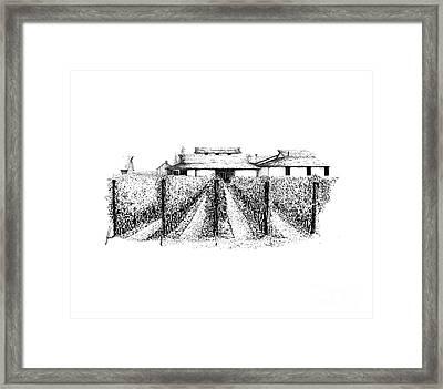 Inniskilin Winery Framed Print by Steve Knapp