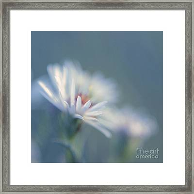 Innocence 03c Framed Print by Variance Collections