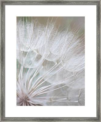 Innocence Framed Print by The Art Of Marilyn Ridoutt-Greene