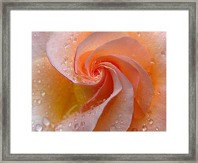 Innocent Beauty Framed Print by Juergen Roth