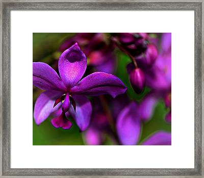 Innocently Waiting...... Framed Print