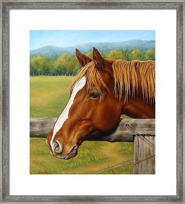 Framed Print featuring the painting Inquisitive by Margaret Stockdale