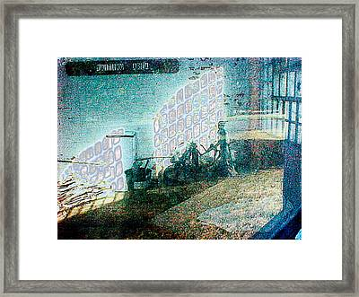 Insane Asylum Framed Print