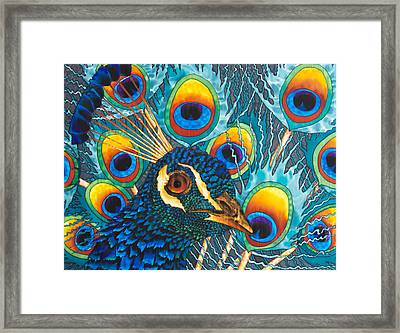 Insane Peacock Framed Print