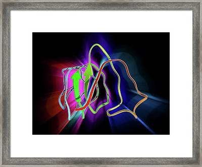 Insect Antifreeze Protein Framed Print