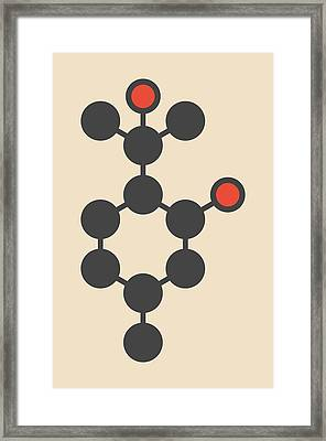 Insect Repellent Molecule Framed Print
