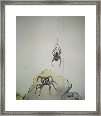 Insects That Crawl And Fly Album Framed Print by Debbi Saccomanno Chan