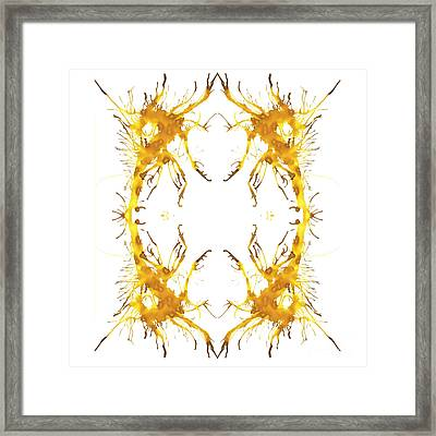 Insectus Framed Print by Lyndsey Warren
