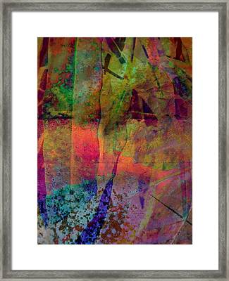 Inside Autumn Framed Print by Shirley Sirois