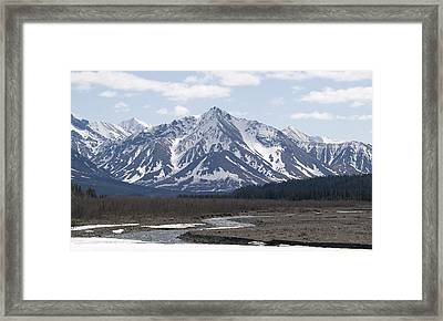 Inside Denali National Park 4 Framed Print by Tara Lynn