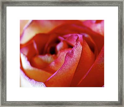 Inside Edge Framed Print by Rona Black
