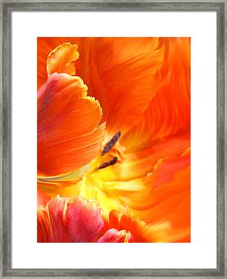 Framed Print featuring the photograph Inside Her Journey by The Art Of Marilyn Ridoutt-Greene