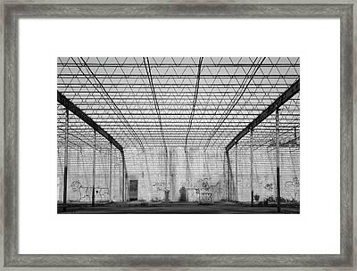 Inside Paradise Bw Framed Print by Lynda Dawson-Youngclaus