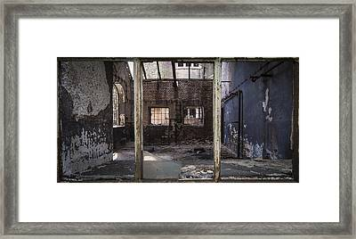 Insight Framed Print by Akos Kozari