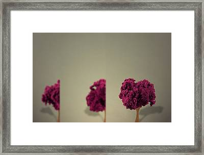Insight Framed Print by Mark  Ross